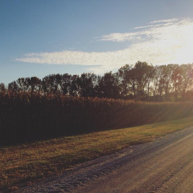 Sunset in Springfield, Nebraska | Sarah McDonald